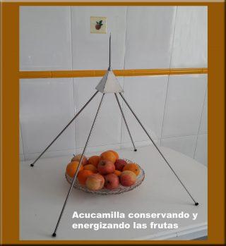 Acucamilla Energizando fruta