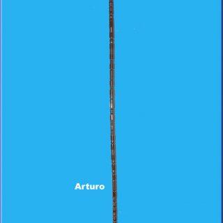 Antena Arturo